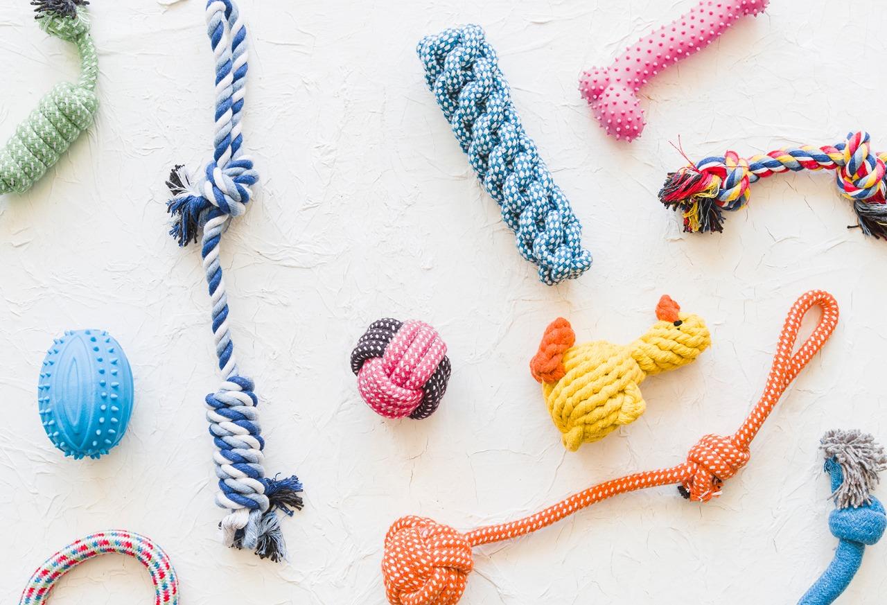 Sabe escolher brinquedos para cachorro?